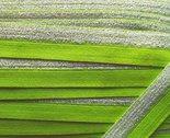 omvouwelastiek-16-cm-breed-met-glitterband-aan-één-kant-limegroen