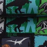 Fiete: softshell: bonte dinosaurusstof_