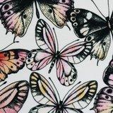 Theo: tricot wit met vlinders_