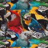 Tim: digitaal bedrukte tricot:papegaaien_