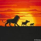 Lion King panel  60 bij 50 cm. Mufasa, Pumbaa en Simba met ondergaande zon_