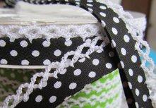 biaisband  zwart met witte stip en wit randje