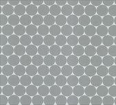 Fresh Dots: Geplastificeerde katoen voor o.a.jassen! Grijs op wit