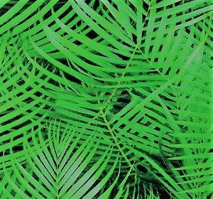 Tim: digitaal bedrukte tricot: helder groene palmbladeren op zwart