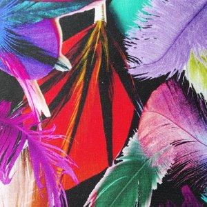 coupon 90 cm: Tim: digitaal bedrukte tricot:bonte veren op zwart
