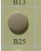 snaps beige glanzend/B25