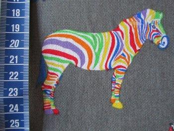 Zebra, grijze katoen met gekleurde zebra's