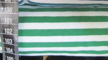 Vicente strepen: groen-wit