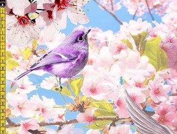 Tim: digitaal bedrukte tricot: vogeltjes tussen de bloesem, prachtige tricot! Aanbieding!!