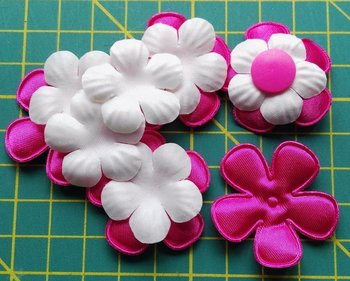 5 fuchsia bloemen met witte bloemblaadjes erop en bijpassende snaps maat 20