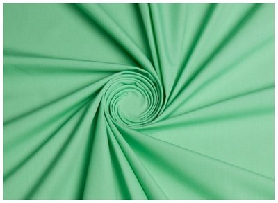 siliconpoplin (chintz)  mint
