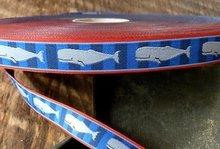 Walvissen-sierbandje