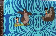 Disney's junglebook: mooie tricot met Mowgli en Baloo de beer