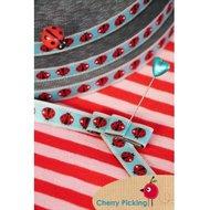 Ladybird-sky-sierband